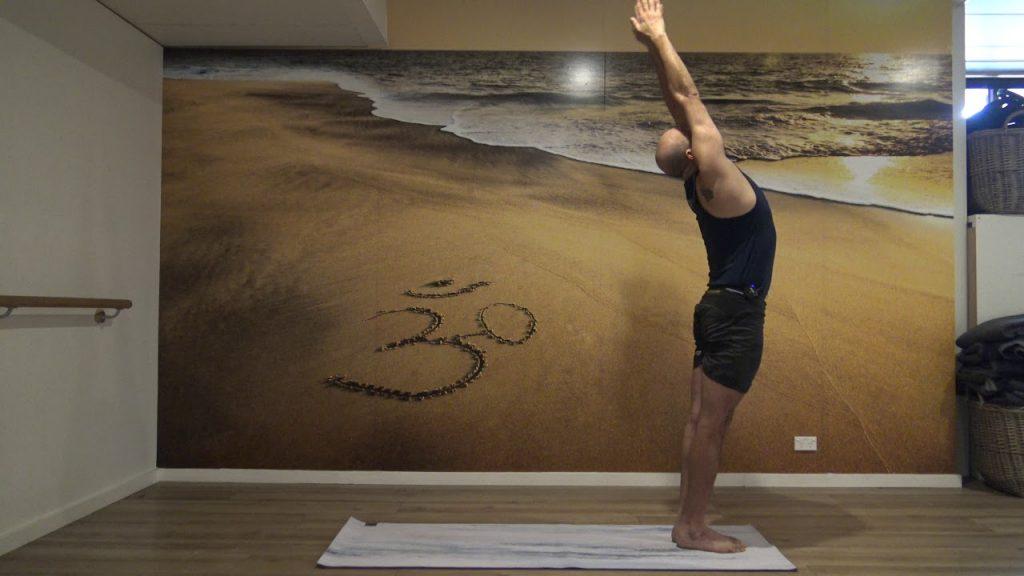 Hatha and Dynamic Hatha Yoga