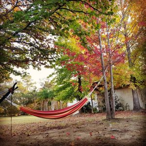 Souful fitness retreat hammock