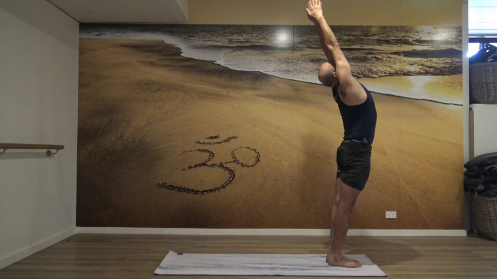 Hatha and Dynamic Hatha Yoga